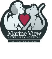 Marine View Veterinary Hospital